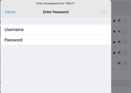 Apple Identity and Password